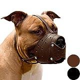 CollarDirect Pit Bull Pitbull Terrier Secure...