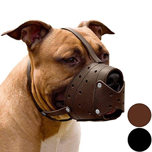 Pit Bull Pitbull Terrier Sicherer Korb Maulkorb für Hunde aus echtem Leder Staffordshire Terrier, For Pit Bull terrier or Staffordshire terrier, braun