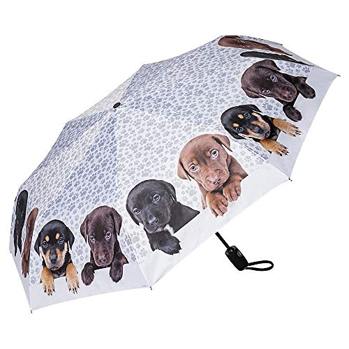 VON LILIENFELD Regenschirm Taschenschirm Welpenquartett Windfest Auf-Zu-Automatik Kinderschirm Stabil Leicht Kompakt
