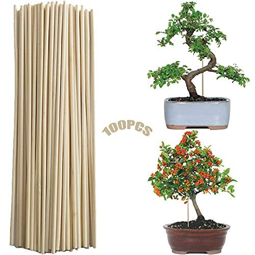 Cañas De Bambu 100 Piezas Apoyo a La Planta Soporte Anticaida Jardín...