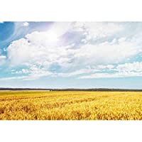 lovedomi 9x6ft フィールドと青空の美しい景色晴れた日の写真の背景写真スタジオブースの背景家族の休暇の誕生日パーティー写真スタジオの小道具写真ビニール素材