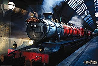 Wizarding World Harry Potter (Hogwarts Express) Maxi Poster, Multi Coloured, 61 x 91.5cm