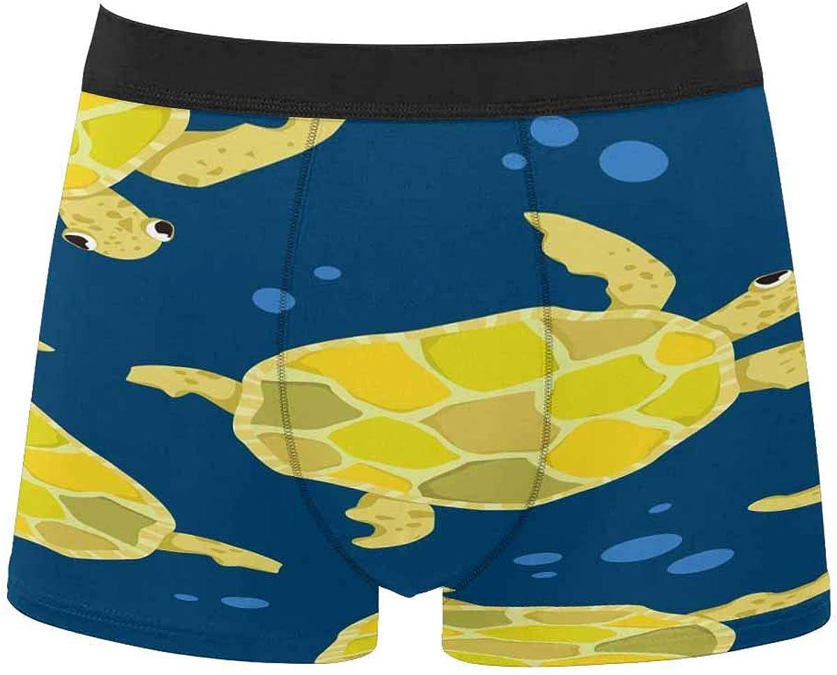 InterestPrint Men's Underwear Boxer Briefs Underwear for Juniors Yoth Boys Cute Turtles Colorful Background