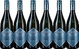 Staatsweingut Freiburg Blankenhornsberger Doktorgarten Chardonnay VDP.Großes Gewächs 2016 Trocken (6 x 0.75 l)