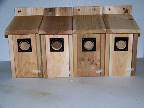 4 bluebird houses cedar metal predator guard ez open handmade