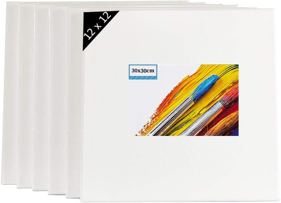 Courier shipping free shipping TOPARCHERY 6 Pack Stretched Blank Canvas for discount Primed 10 Painting
