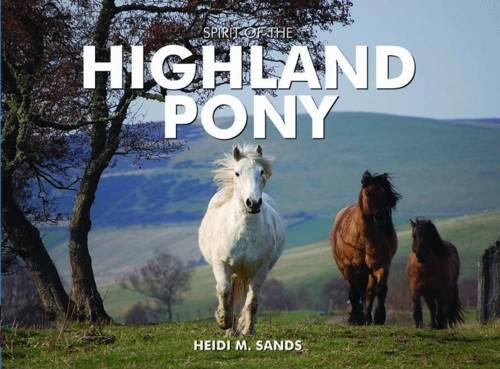 Spirit of the Highland Pony