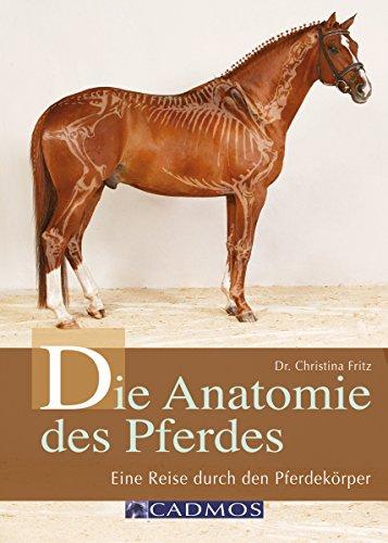 Die Anatomie des Pferdes: Eine Reise durch den Pferdekörper (Haltung und Gesundheit)