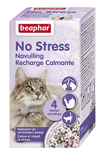 Beaphar – NO Stress – Recharge pour diffuseur électrique calmant à la Valériane pour Chat – Réduit Stress et problèmes comportementaux sans dépendance ni Somnolence – 1 Recharge 30 ML – 4 semaines