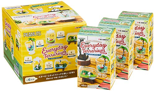 Peanuts Snoopy & Woodstock Everyday Terrarium 6Pack Box