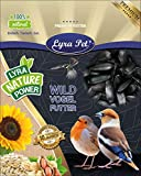 Lyra Pet® 25 kg Sonnenblumenkerne schwarz HK Deutschland Vogelfutter Wildvögel Wildvogelfutter Vögel Winterfutter neue Ernte 2020