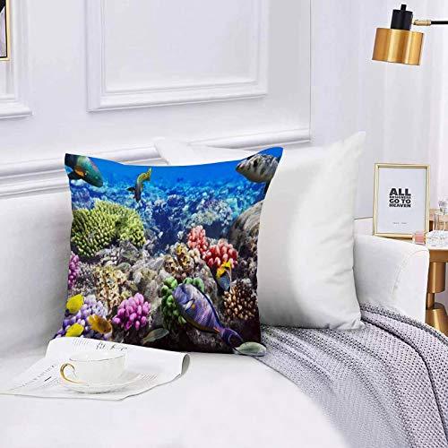 Lilatomer Funda de algodón 45 x 45 cm Lote Arrecife de Hurghada Peces de Coral Rojo Egipto Animales Fauna Silvestre Naturalez Sofá Throw Cojín Almohada Caso de la Cubierta para Sala de Estar 45x45cm