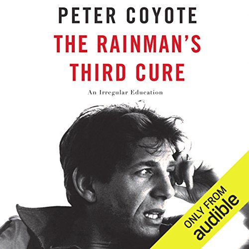 The Rainman's Third Cure audiobook cover art