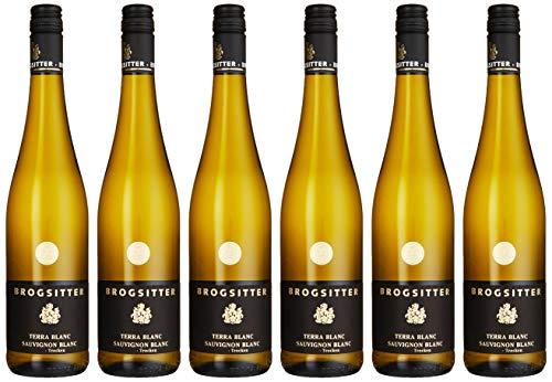 Weinkellerei Brogsitter Terra Blanc Sauvignon Blanc trocken (6 x 0.75 l)