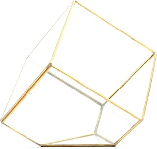 Best gold geometric terrarium wholesale Reviews