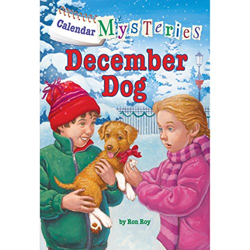 December Dog audiobook cover art