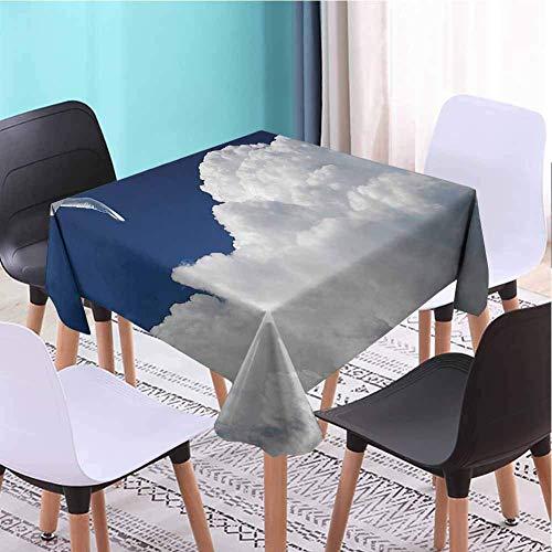 Hohun Colección de gaviotas Mantel Cuadrado Cocina Cielo Nublado y Gaviota voladora Pronóstico Soleado Meteorología Imagen de Nubes Imagen Imprimible Drapability Azul Marino Blanco