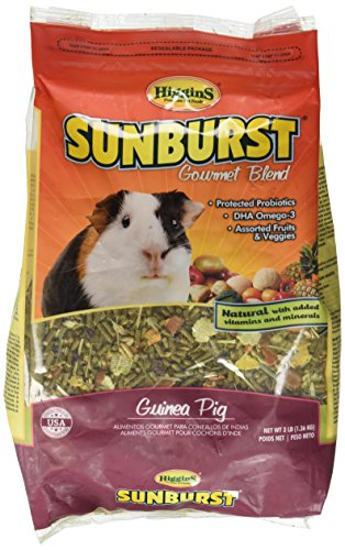 Higgins Sunburst Gourmet Guinea Pig Food Mix