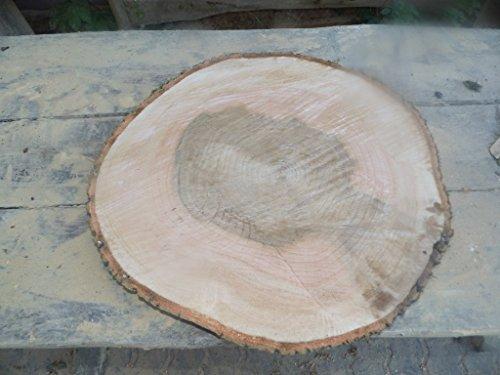 Baumscheibe, Holzscheibe,ca. 50 x 5 cm, Tischplatte, Esche