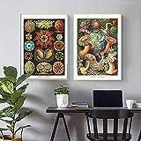 Algas marinas algas marinas Vintage Poster Jellyfish Corals Green Algae Mar Anémonas Squirts Starfish Wall Art Canvas Pintura Decoración 40x60cmx2 Sin marco