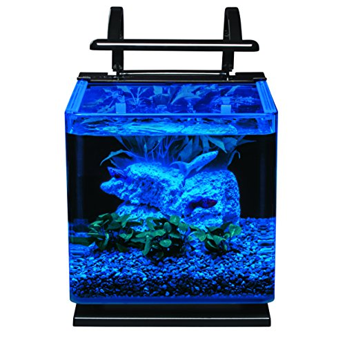 Marineland Contour 3 aquarium Kit 3 Gallons Rounded Glass Corners Includes LED Lighting
