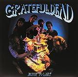 Grateful Dead- Built To Last