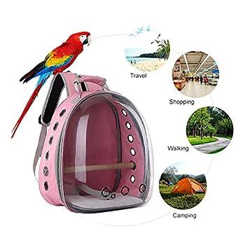 ❤ Sac de transport transparent respirant pour animaux de compagnie, perroquet, oiseau, voyage à 360 ° rose
