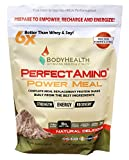 BodyHealth PerfectAmino Complete Power Meal Replacement Shake (Natural Flavor, Pouch, 20 Servings), Organic Protein Powder Drink w/MCT Oil, Probiotics, Vegan, High Nutrition, for Weight Loss Diet