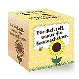 Feel Green Celebrations Ecocube, Sonnenblume Bio Samen, Holzwürfel Mit Lasergravur «Für Dich Soll Immer Die Sonne Scheinen», Nachhaltige Geschenkidee, Anzuchtset, Made in Austria