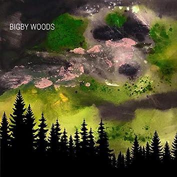 Bigby Woods