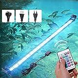 HaiMa - Lámpara de acuario, 72 cm, 24 W, luz LED para acuario, iluminación de plantas de interior, pesca Luminaria RGB con mando a distancia – Plug