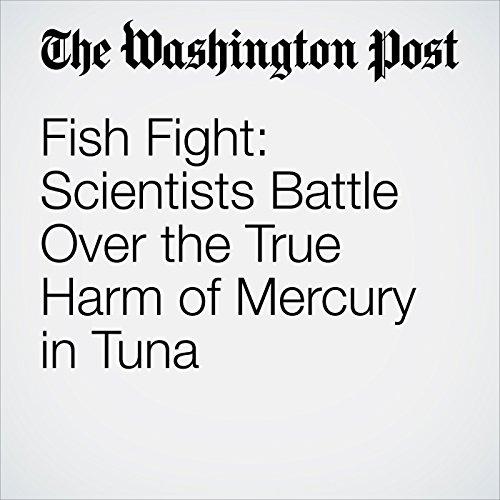 Fish Fight: Scientists Battle Over the True Harm of Mercury in Tuna copertina