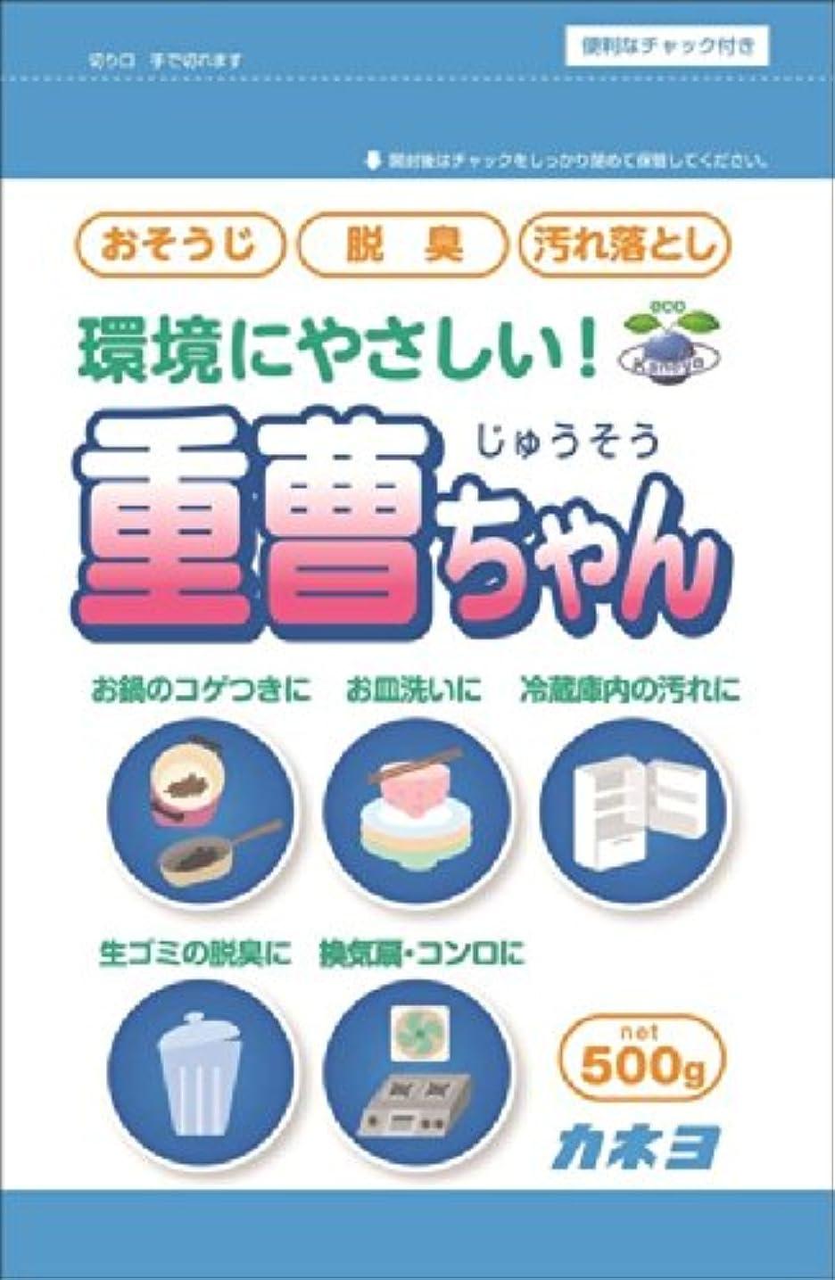 暖かく回復するトチの実の木カネヨ石鹸 重曹ちゃんSP 500g