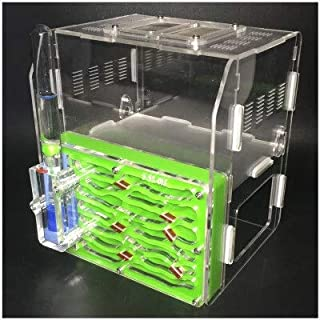 لعبة تعليمية DIY M1H من Thick Ants Nest Villas Workshop Ant المصنوعة من الأكريليك, جريه مارل, 167x166x185mm