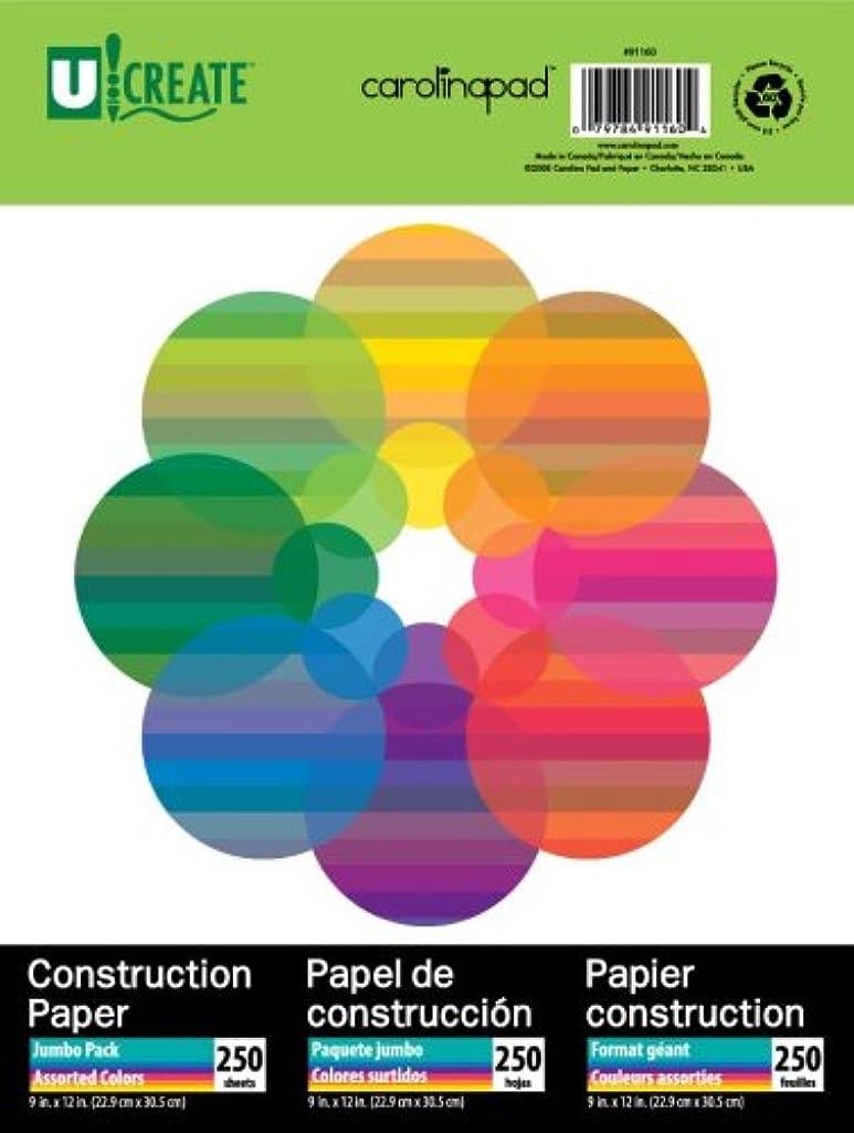 Carolina Pad U:Create Construction Paper, 9 x 12 Inches, Assorted Colors, 250 Sheets (91160)