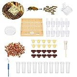 Janolia Juego Completo de Vasos de Cría de Abeja y Reina para Apicultura, Juego de Cajas de Apicultura, 110 Tazas de celda Desechables