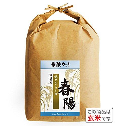 【玄米】富山県産「低たんぱく米」「低グルテリン米」春陽(令和元年)5kg