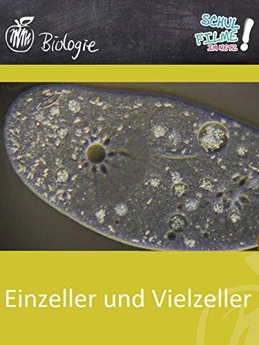 Einzeller und Vielzeller - Schulfilm Biologie