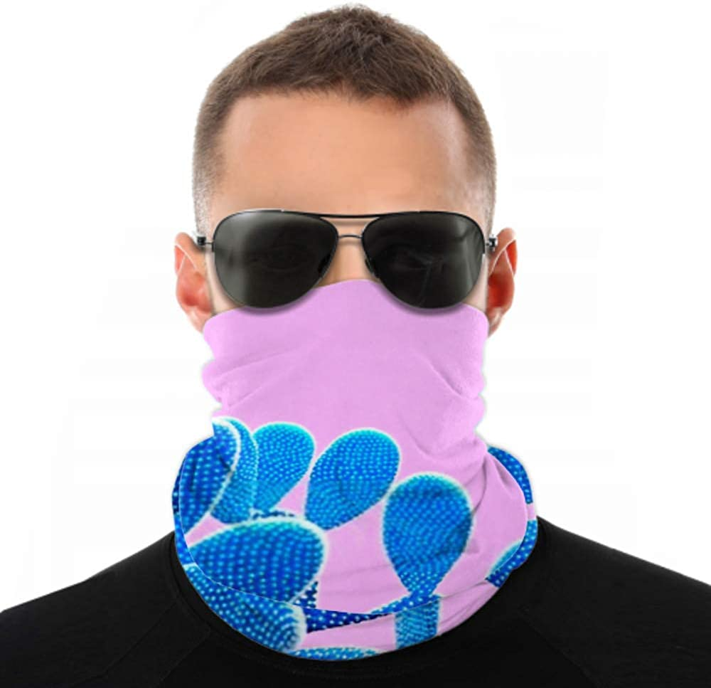 Headbands For Men Women Neck Gaiter, Face Mask, Headband, Scarf Cactus Blue Colored On Pink Background Turban Multi Scarf Double Sided Print Workout Headbands For Sport Outdoor
