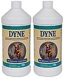 Dyne High Calorie Liquid for Dogs (2 Pack / 32-Ounces Each)