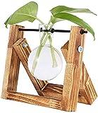 KnikGlass Florero de Bulbo Soporte de Madera Vintage y Varilla giratoria de Metal para Plantas hidropónicas Jardinera de Vidrio de Escritorio para la decoración de la Boda del jardín del hogar (1)