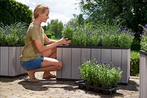 Keter Sequoia 39 Inch Wide Resin Large Outdoor Garden Bed with Self Watering Planter Feature product image