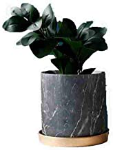 Orchid Pots with Holes 6 Inch Indoor Plant Flower Bonsai Pot with Drainage Tray Marble Ceramic Décor Gray