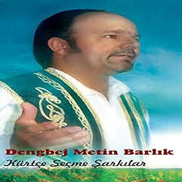 Kürtçe Seçme Şarkılar