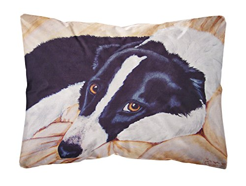 Caroline's Treasures Naptime Border Collie Fabric Decorative Pillow, 12 inch x 16 inch, Multicolor