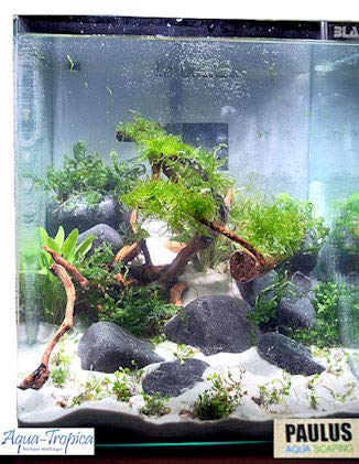 Blau Aquaristic - Nano-Aquarium Cubic 20 Liter - Basis Glas Aquarium