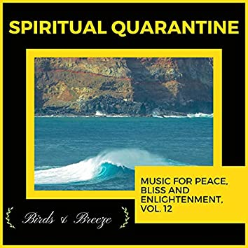 Spiritual Quarantine - Music For Peace, Bliss And Enlightenment, Vol. 12