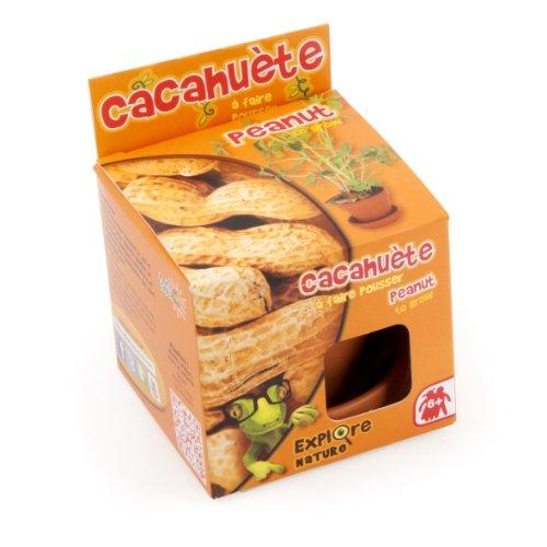 Radis et Capucine Graine de Cacahuètes en Pot de Culture pour Enfant Terre Cuite Multicolore 5 x 5 x 5 cm