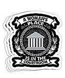 Lawyers Graduation Idea Law School Woman Graduate Gift Decorations - 4x3 Vinyl Stickers, Laptop Decal, Water Bottle Sticker (Set of 3)