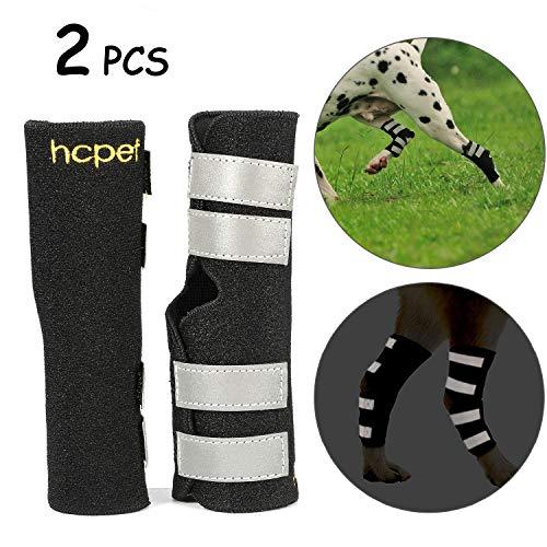 Hcpet Hind Pierna Wrap Protector, Soportes para Perros para Rodilla de Perro con Correas Reflectantes de Seguridad para la protección de Lesiones y esguinces (M)